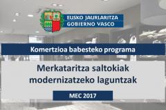 MEC: Merkataritza saltokiak modernizatzeko laguntzak - 2017